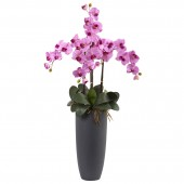 Phalaenopsis Orchid Arrangement with Bullet Planter - Mauve