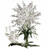 Dancing Lady (Set of 12) - White