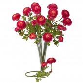 "23"" Ranunculus Stem (Set of 12) - Beauty"