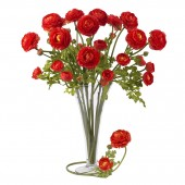 "23"" Ranunculus Stem (Set of 12) - Red"