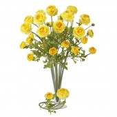 "23"" Ranunculus Stem (Set of 12) - Yellow"