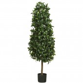 5' Sweet Bay Pyramid Silk Tree - Green