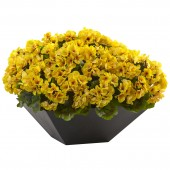 Geranium with Black Planter UV Resistant (Indoor/Outdoor) - Yellow