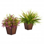 Assorted Grass with Planter (Set of 2)