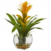 Bromeliad with Vase Arrangement - Yellow