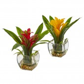 Bromeliad with Vase Arrangement (Set of 2)